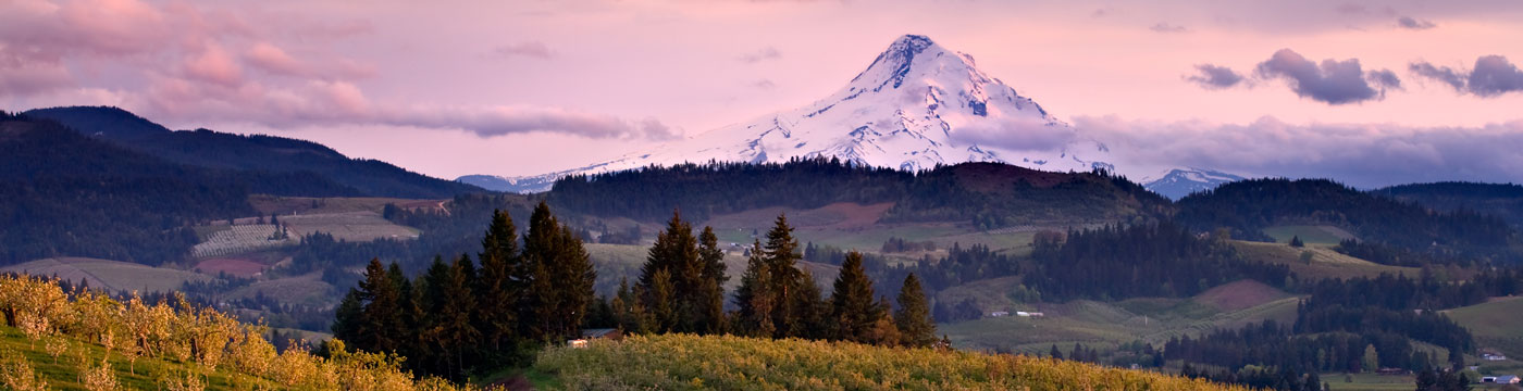 Mt. Hood Orchards