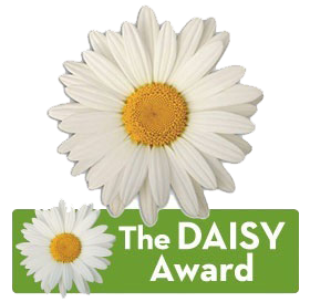 Daisy Award icon