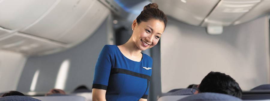 united airlines flight attendant jobs jobs in chicago il